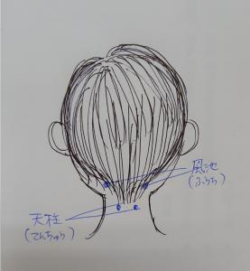 sketch-1586850343265
